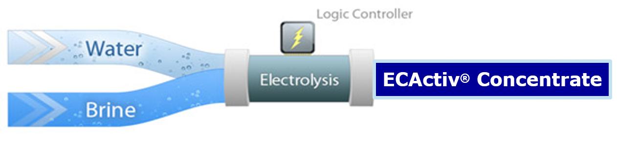ECA Diagram.png