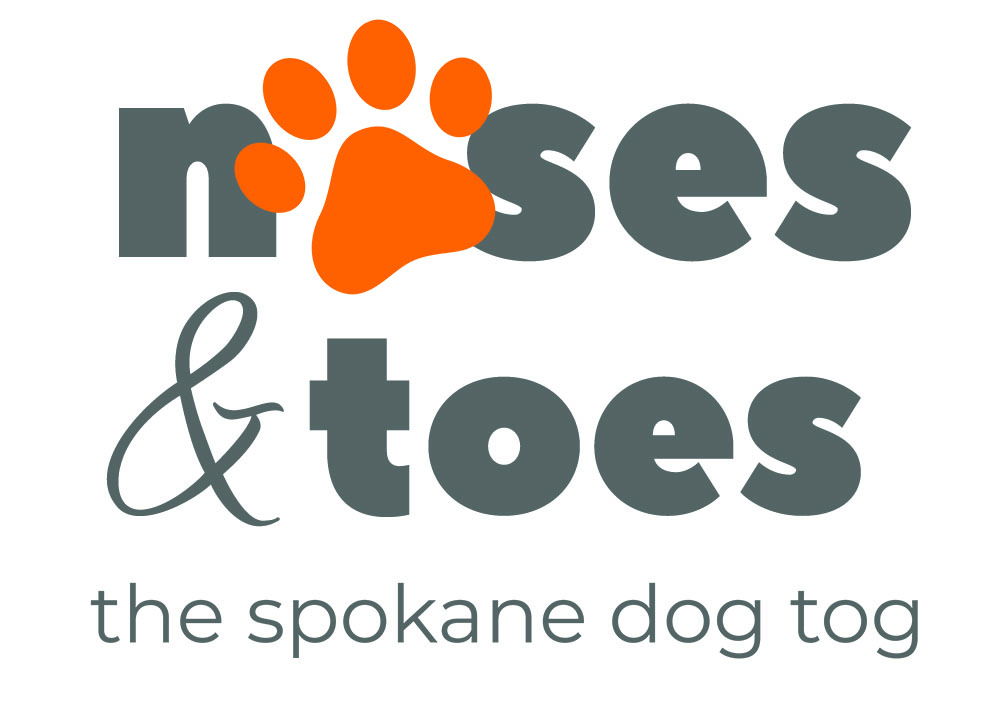 Noses and Toes Spokane Dog Photographer
