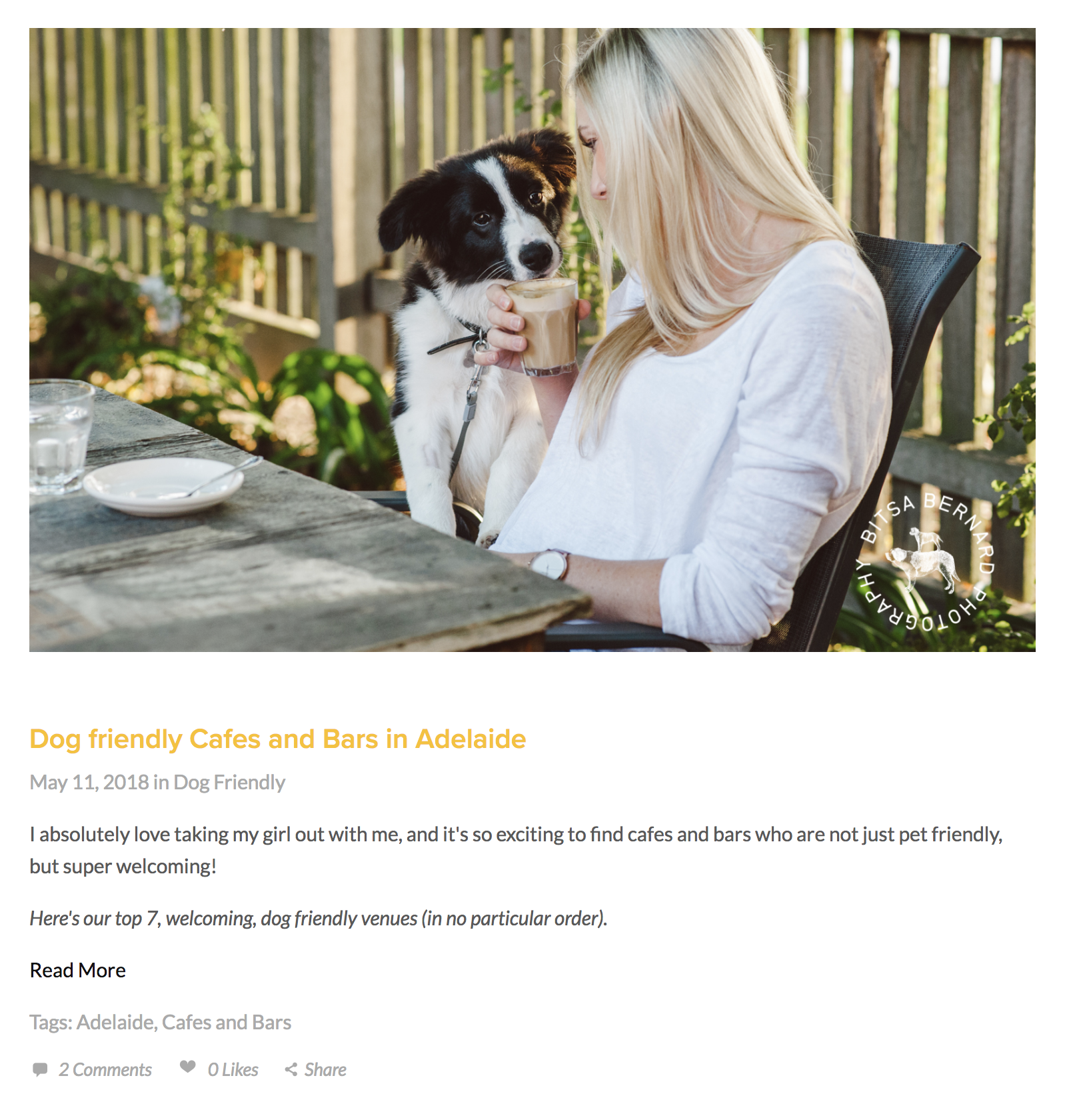 Kirstie's Blog Post - Linking to dog friendly businesses around Adelaide helps her SEO and also plants the seed for potential future partnerships