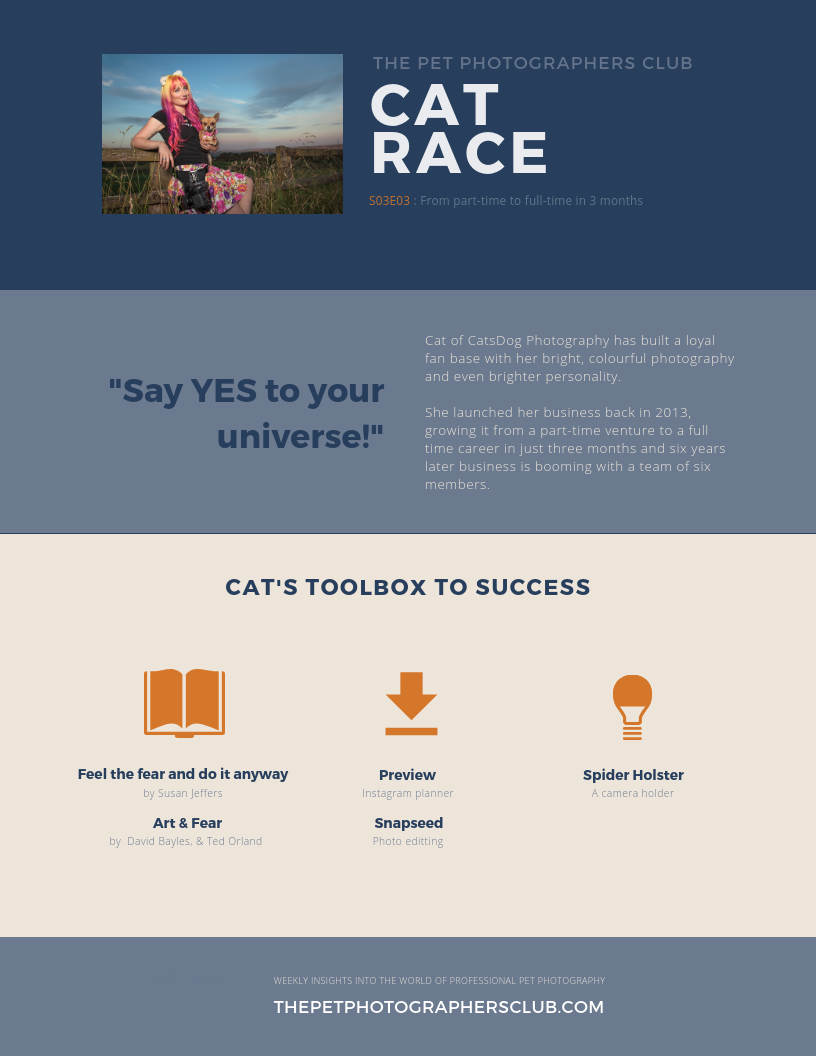 Cat Race  -Toolbox to Success Infographic.png