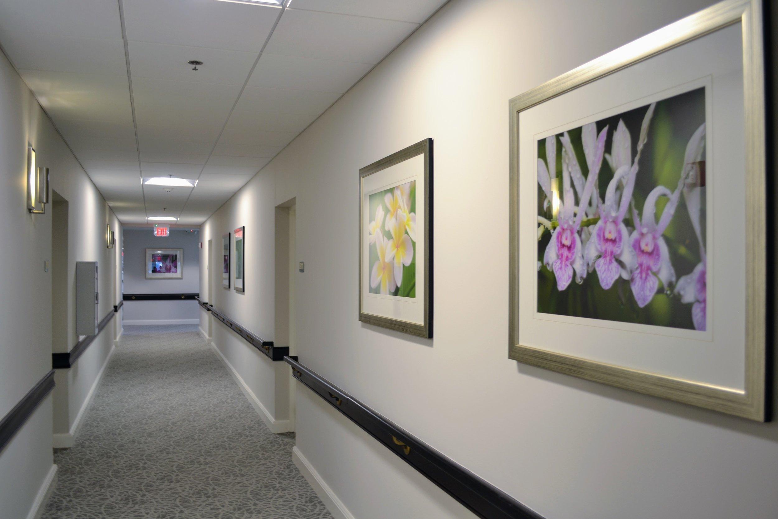 Banyan Place at Boca Raton Interior Hallway