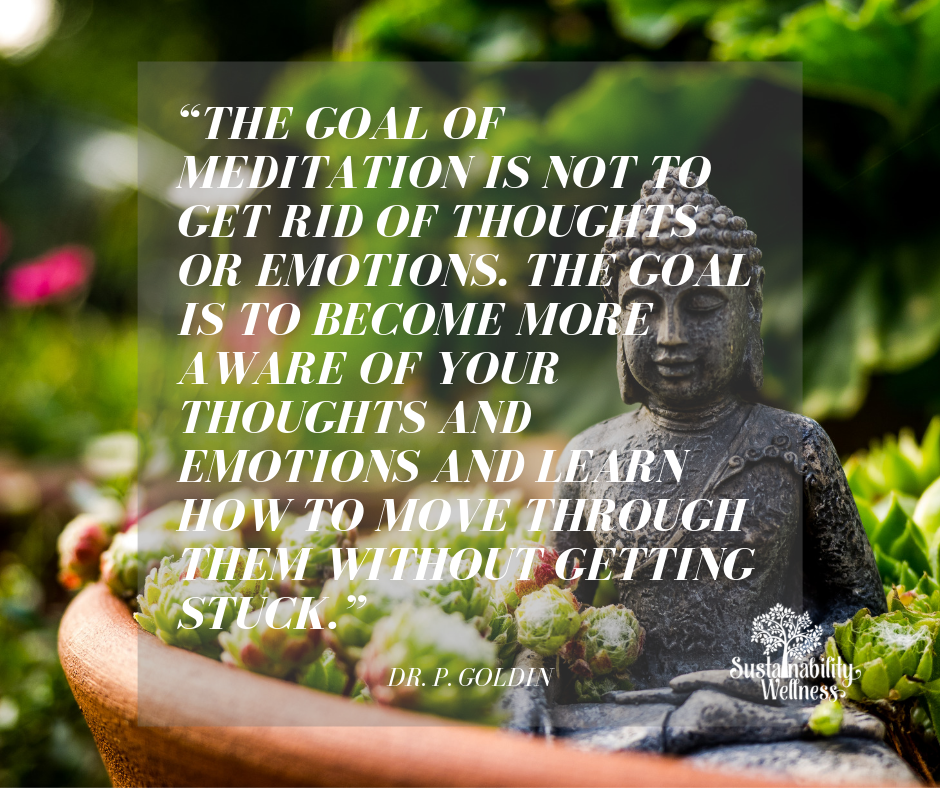 """""""The goal of meditation is not to get rid of thoughts or emotions. The goal is to become more aware of your thoughts and emotions and learn how to move through them without getting stuck."""".png"""