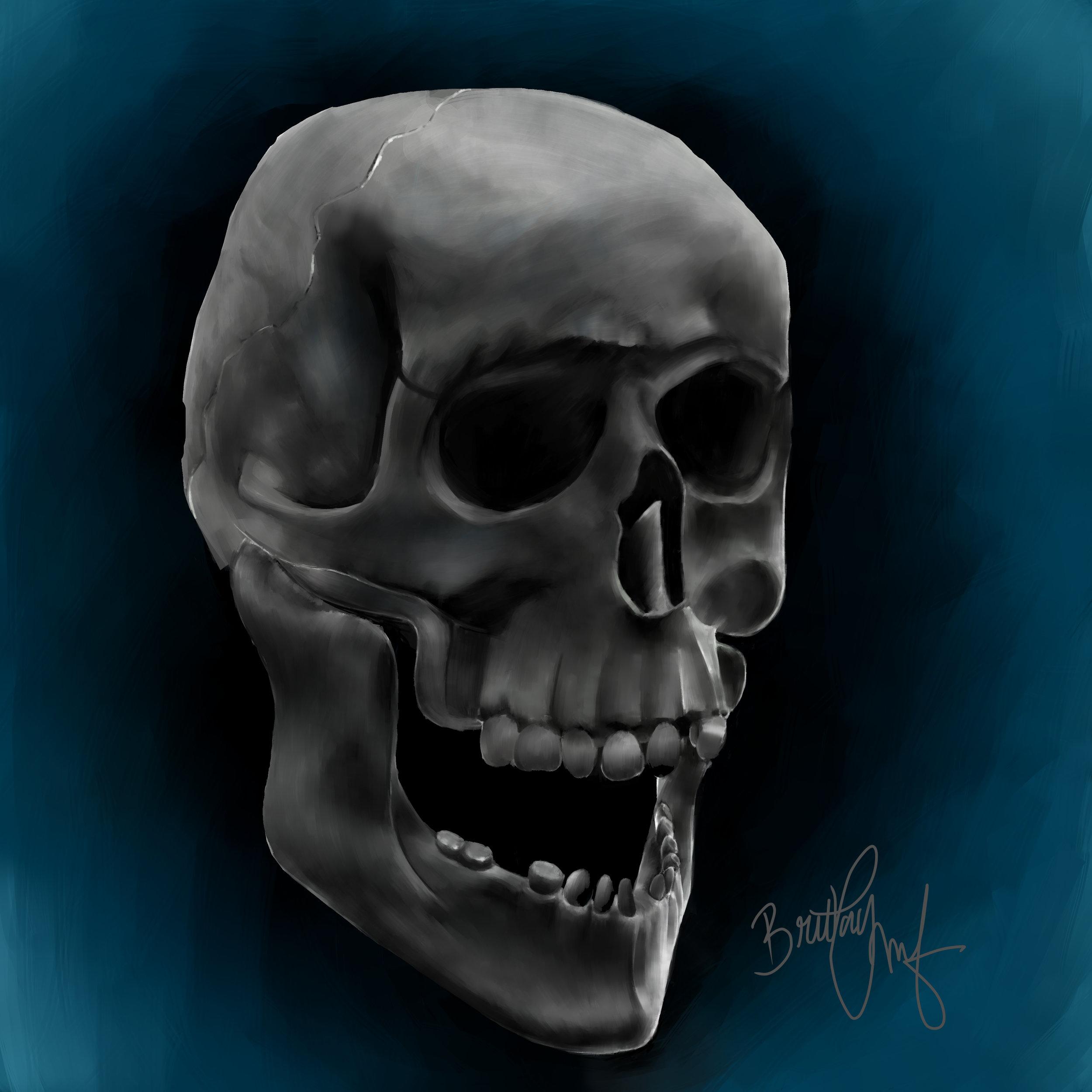 Still Life skull.jpg