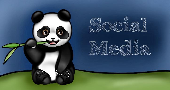 Daniel Social Media Portoflio Size.jpg