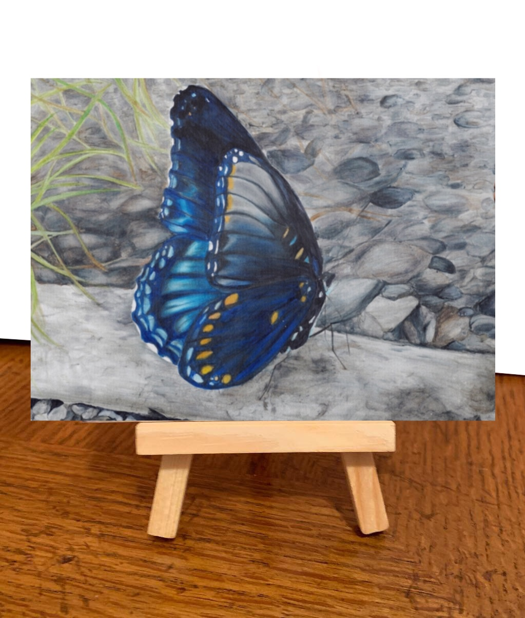 Blue Butterfly Britt Teanie  Available (Made to Order)