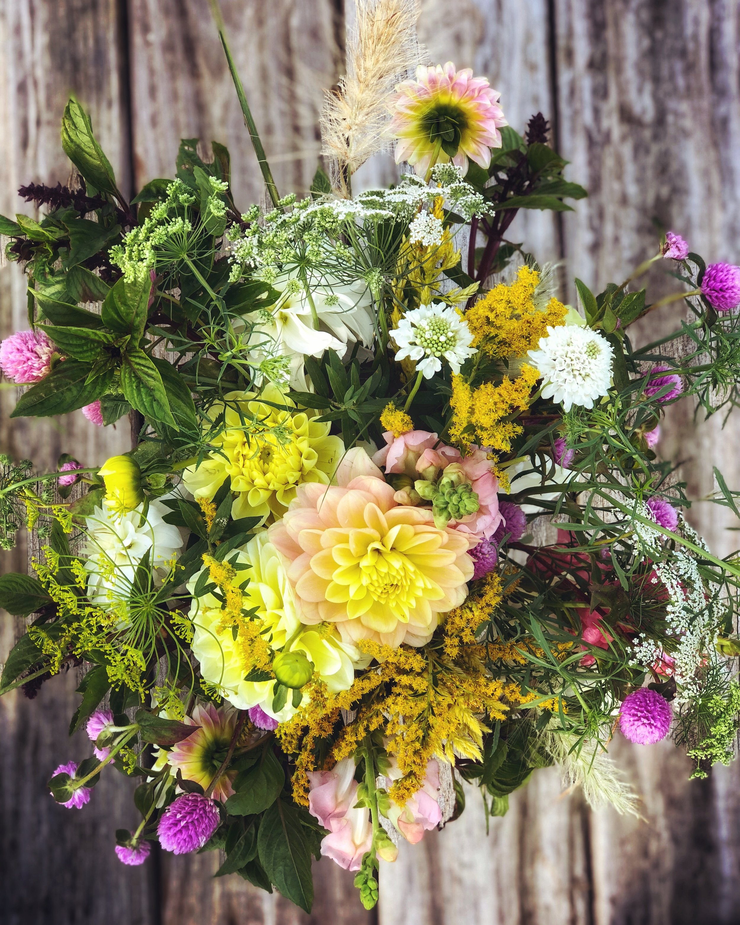 Full Flower Season Subscription (sold out) - Slow down this summer and enjoy each fragrant moment until first frost. Make your world bloom for a full season of 14 weeks of farm-fresh loveliness. Enjoy a weekly hand-tied bouquet of the season's best starting in July and lasting until mid-October.