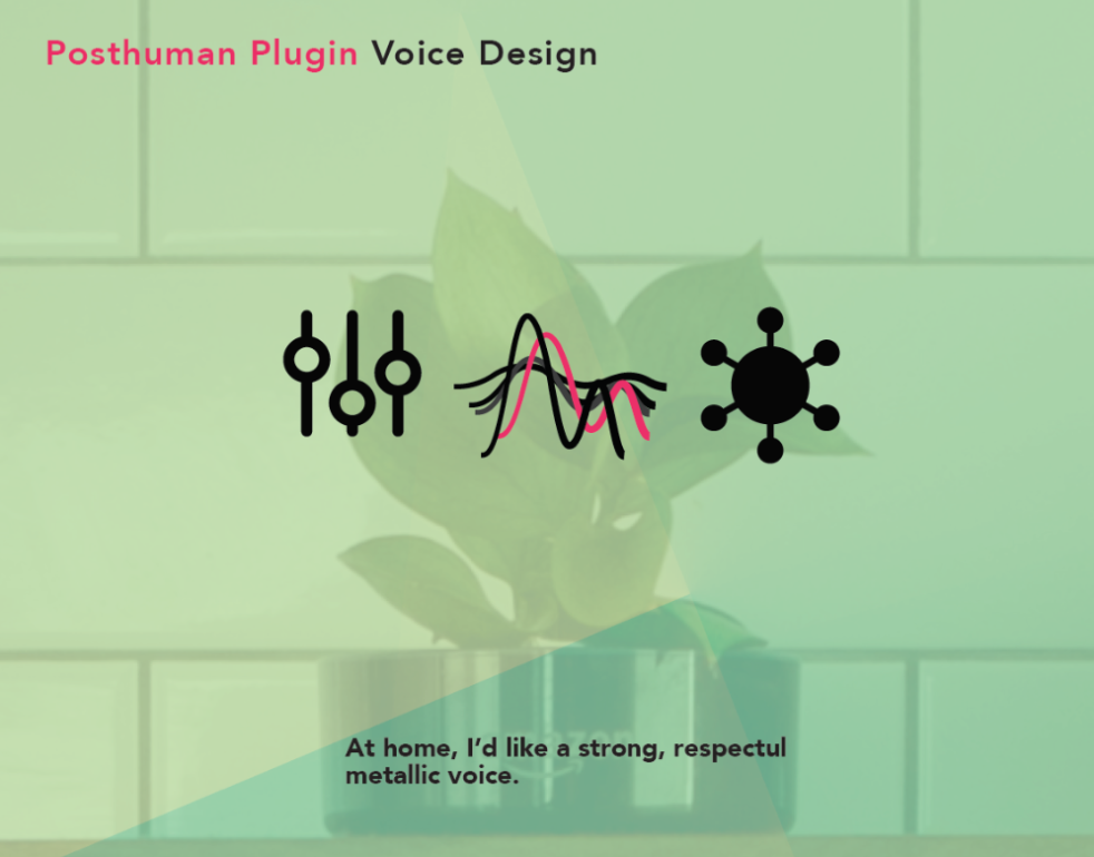 Co-Creating Thoughtful Voice Design -
