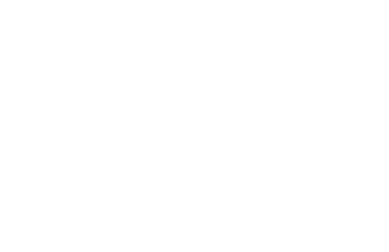 BrianAndSherin-white.png