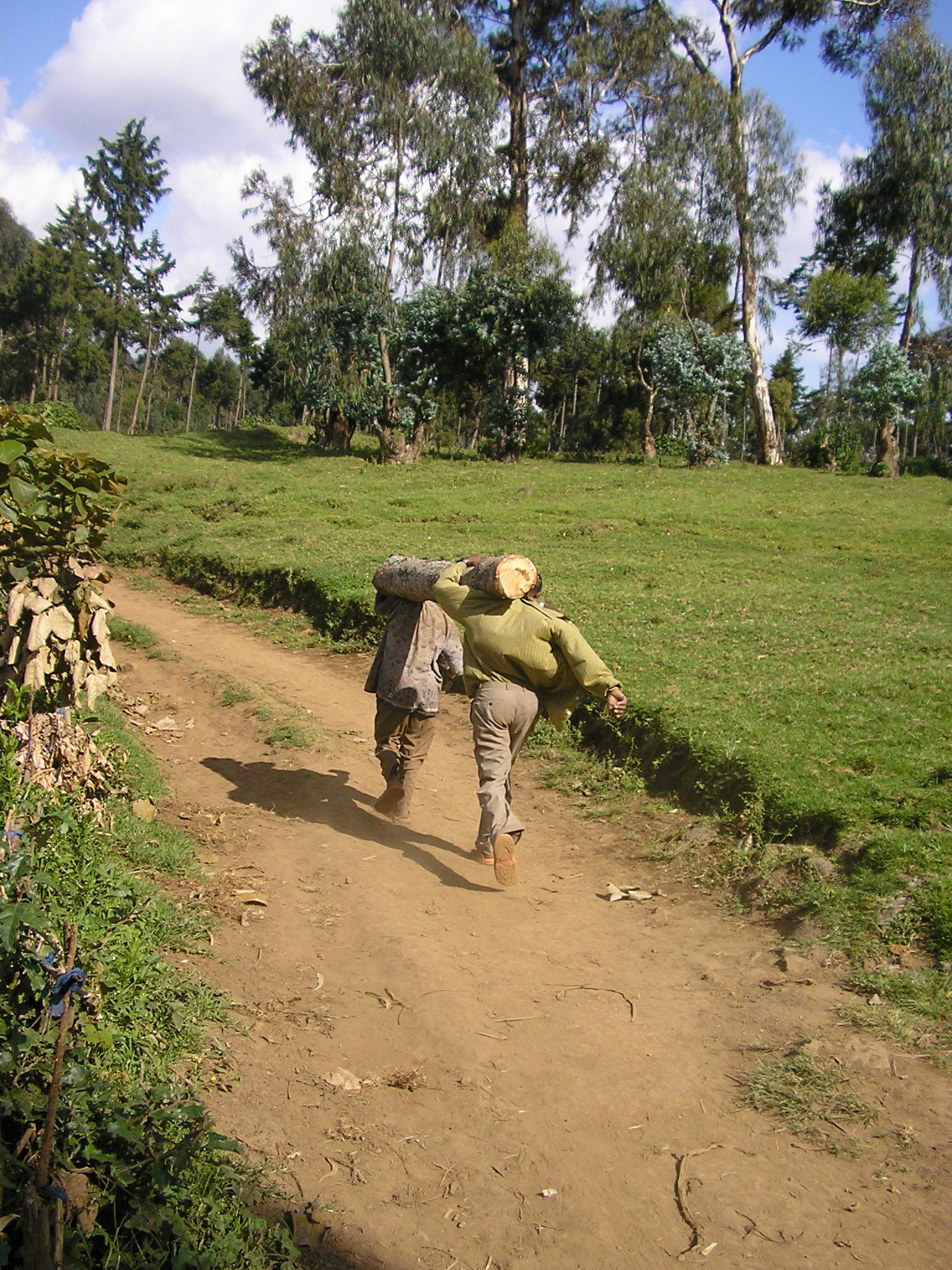 102bingwa2005.jpg
