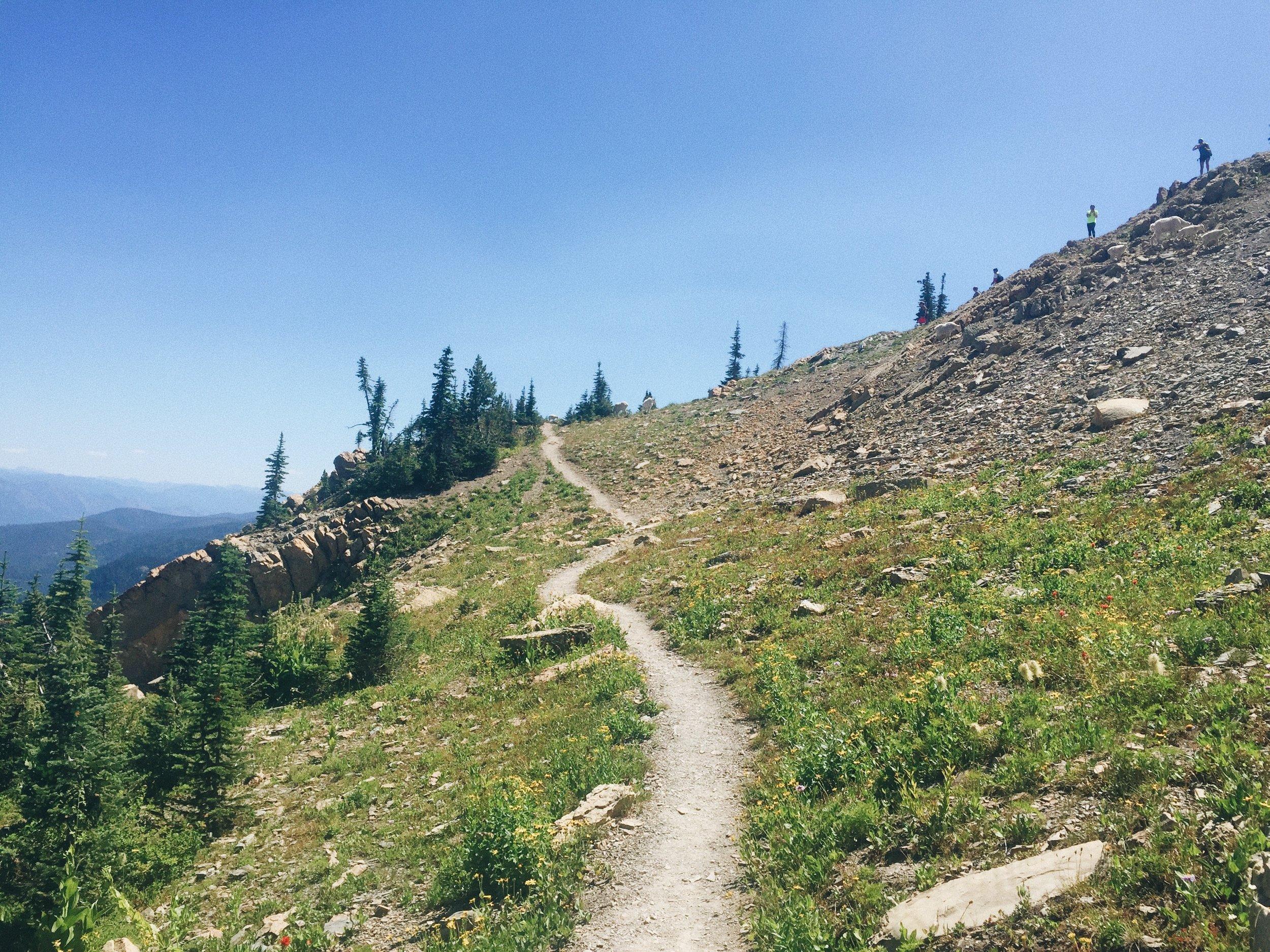Bigfork, Montana