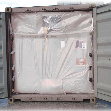 Silvana Plata - container3.png