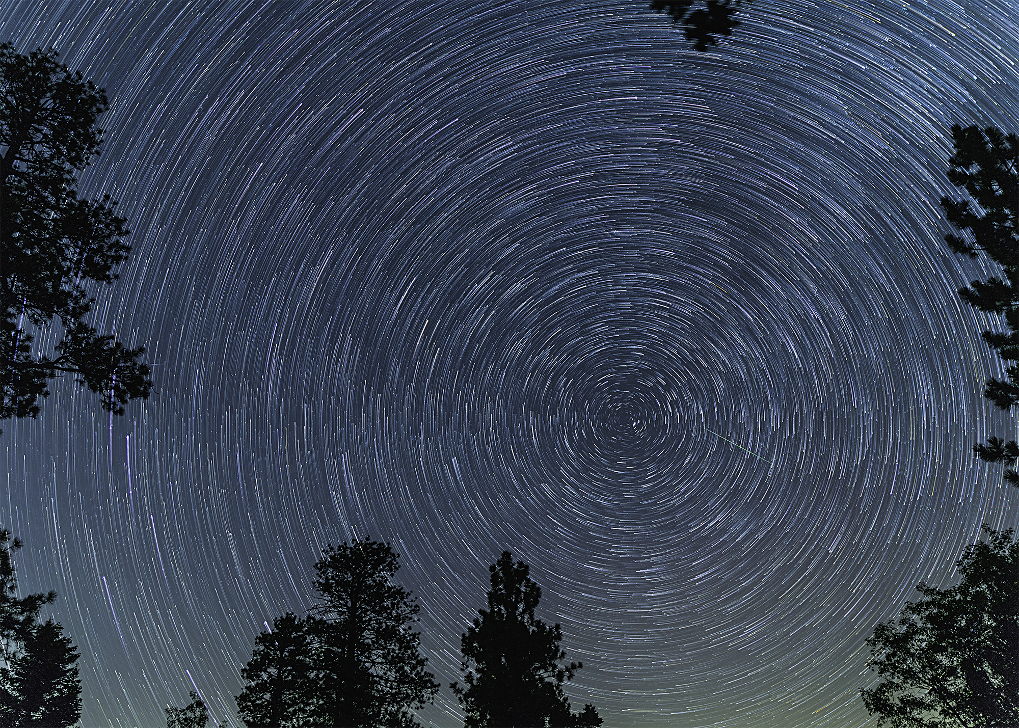 star trails 8.12 resized.jpg