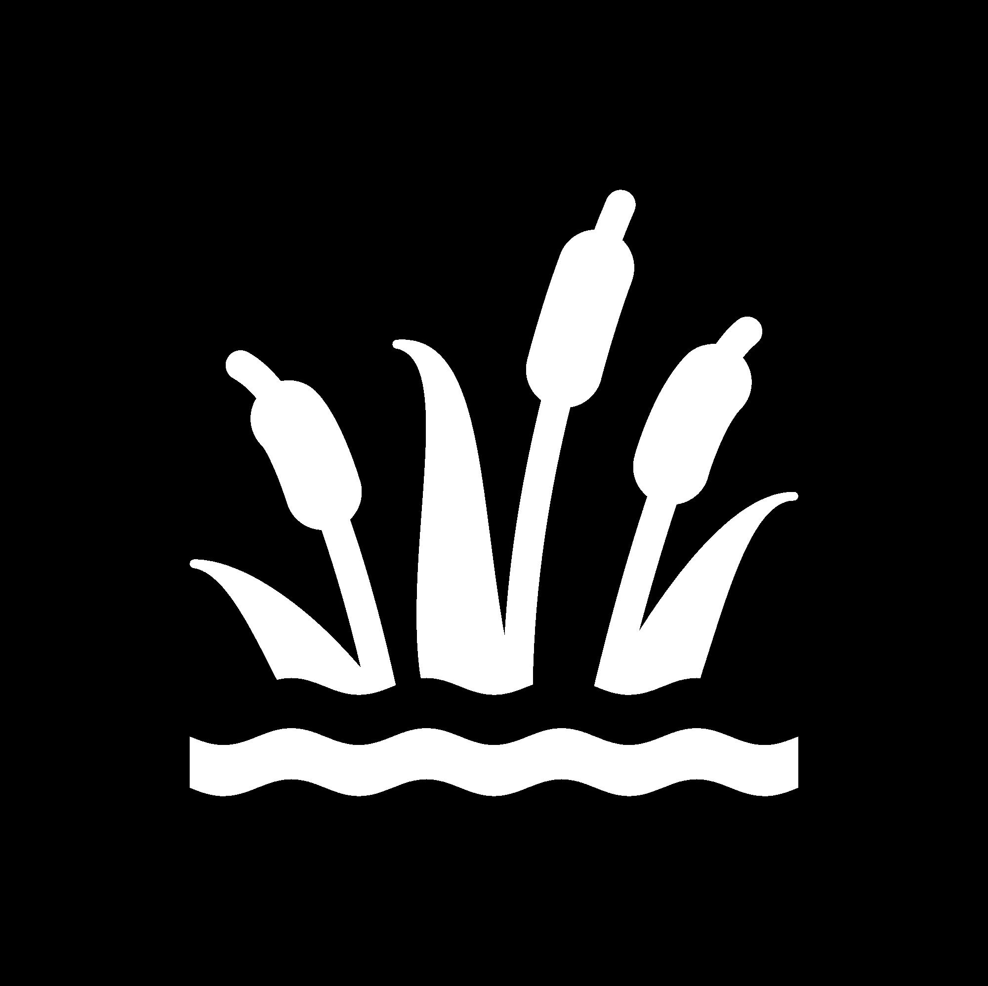 Professional Wetland Scientist