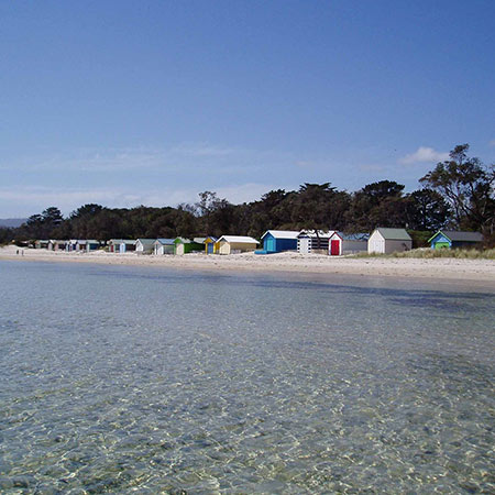 About Us - Nestled in the heart of the Mornington Peninsula, CSF is the perfect place for recreation and camping. Enjoy a walk on the bay trail, launch the tinnie at Tootgarook boat ramp or come camping and visit the many attractions in the area.