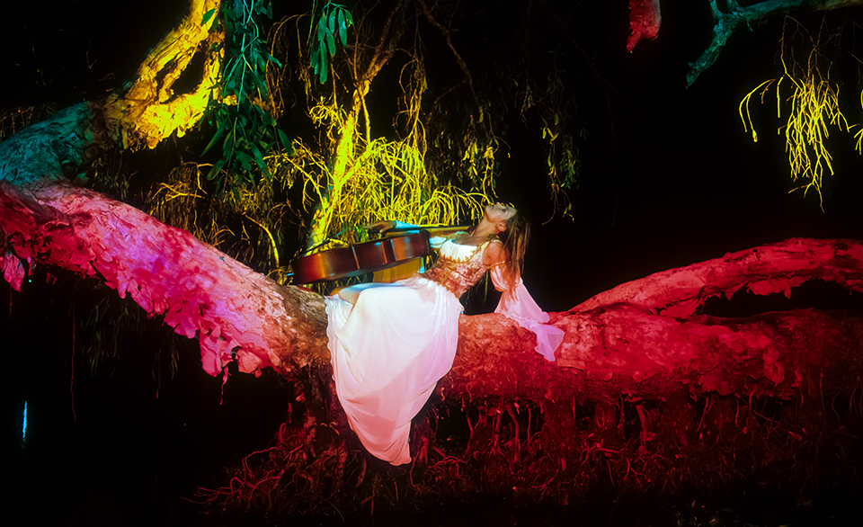 Lisa on the tree with Cello (horizontal), Townsville, QLD. Australia. 2002 (Levels checked).jpg