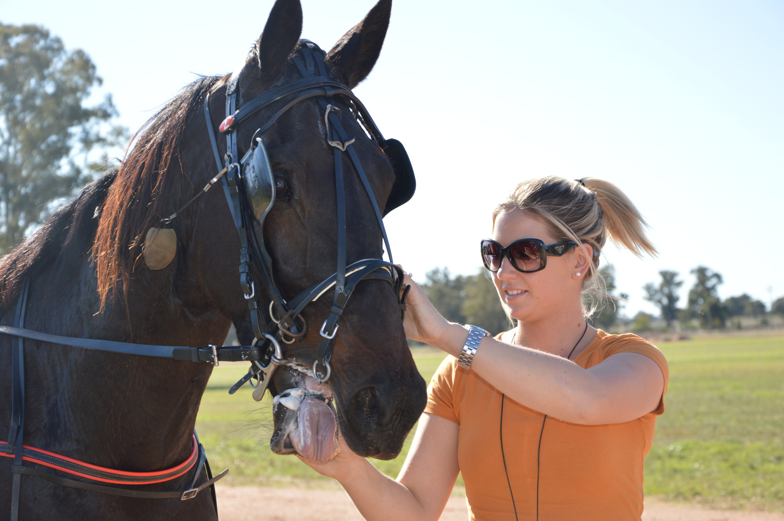Image Courtesy of National Trotguide - Gemma Rue with one of the team.