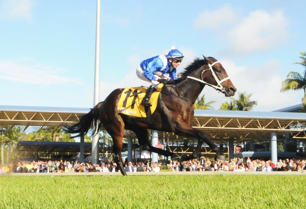 Image Courtesy of Trackside Photography -Larry Cassidy wins Sunshine Coast Guineas on Winx 2015