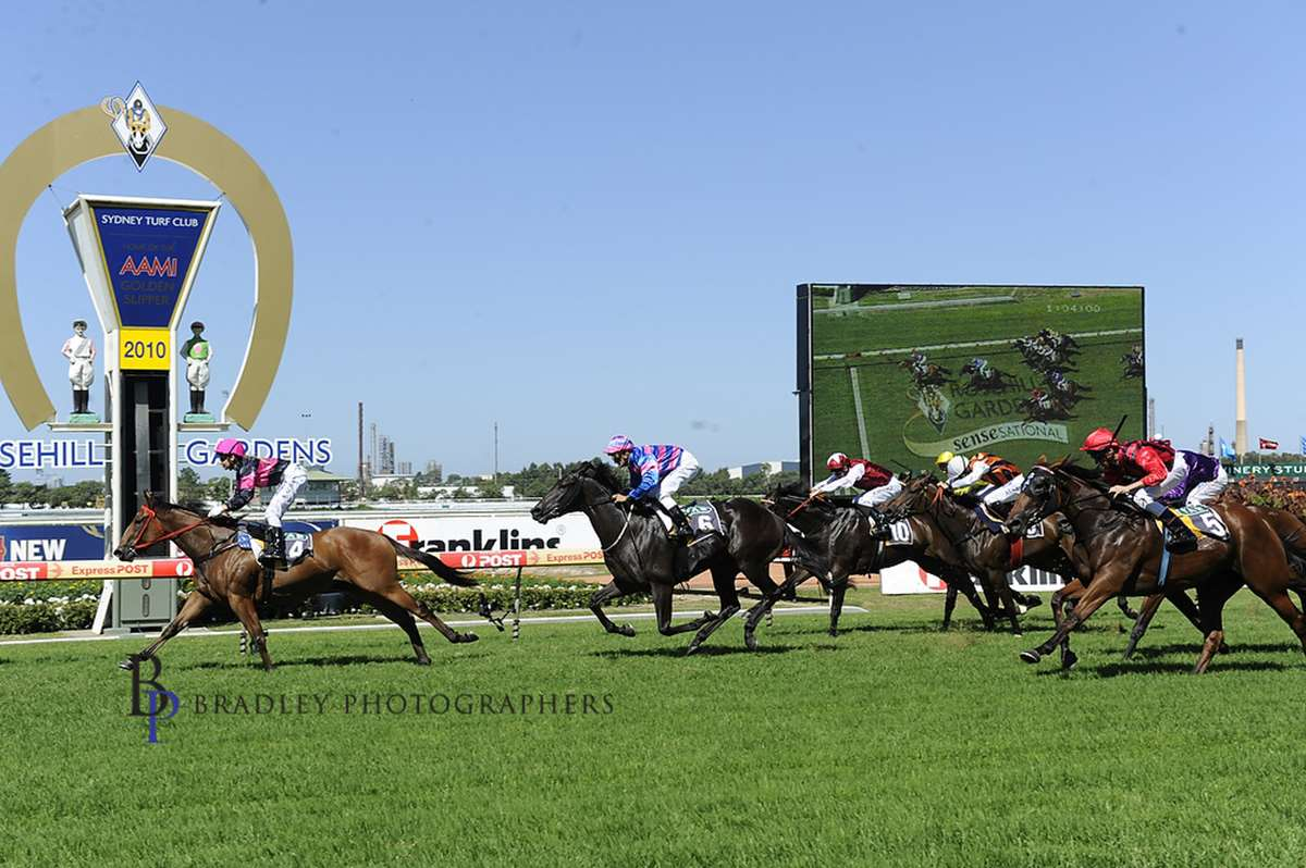 Image Courtesy of Bradley Photos - Chance Bye wins Silver Slipper Stakes 2010