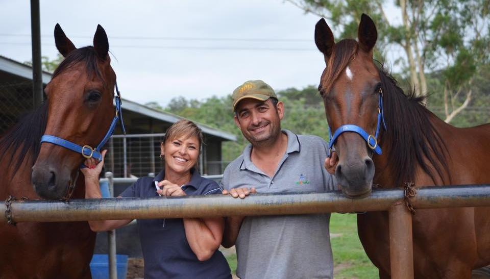 Image courtesy of Harness Racing NSW - Mary and Joe at work