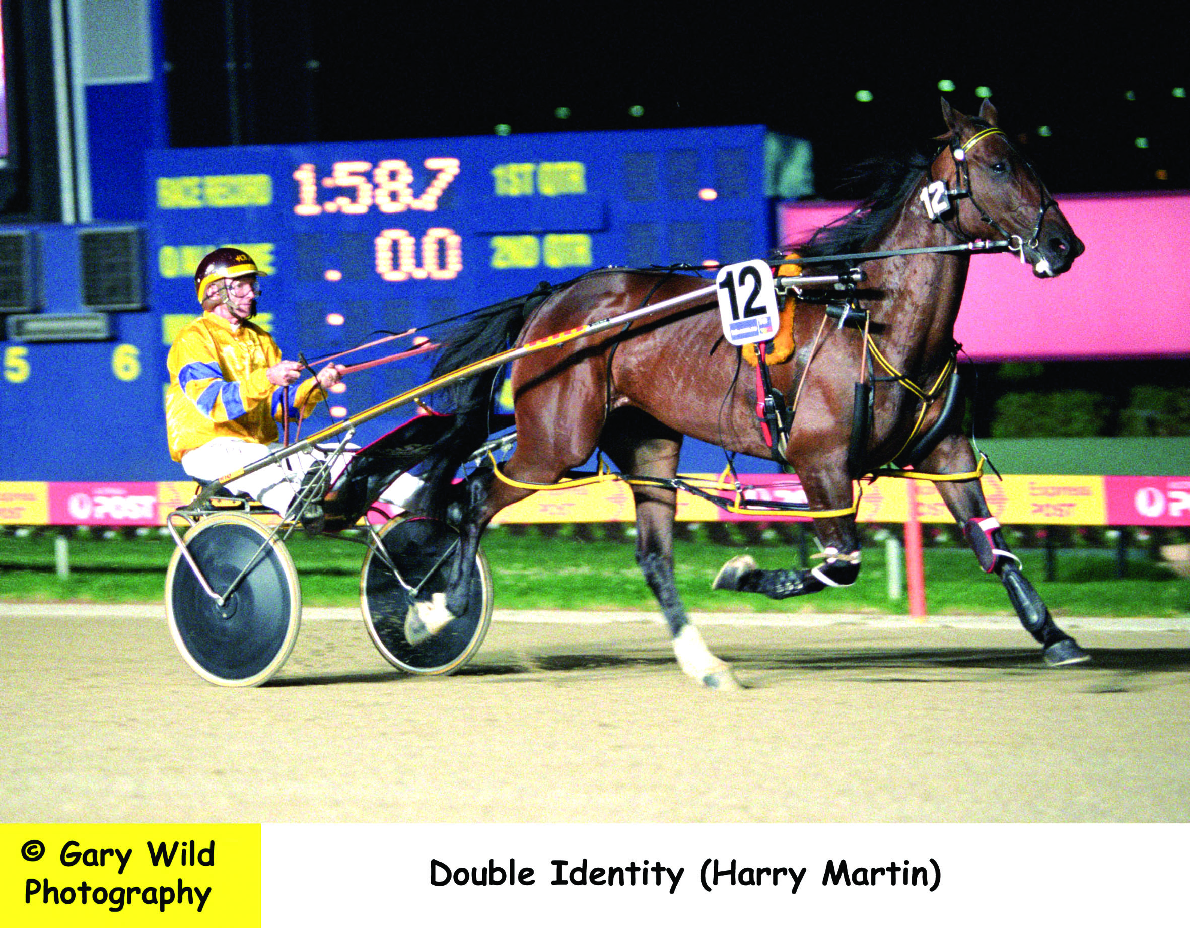Image courtesy National Trotguide - Double Identity warms up before the Victoria Cup