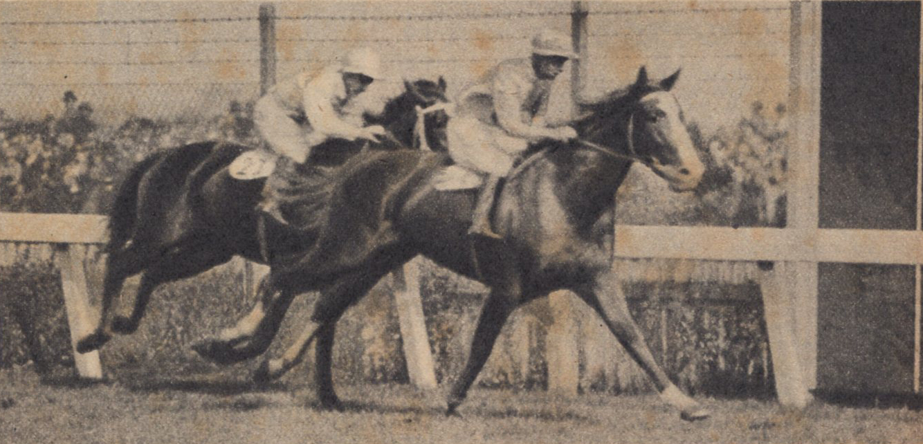 Image courtesy of Barry Collier - Trivalve gives Bob a fourth Melbourne Cup.