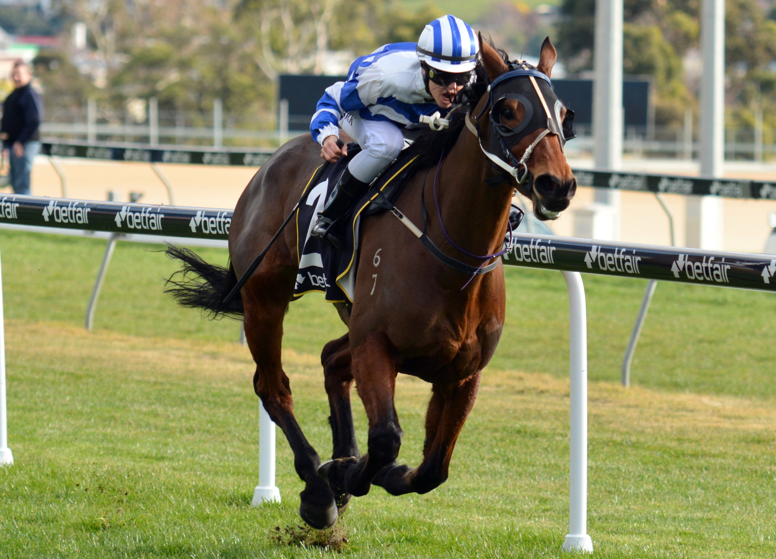 Image courtesy Tasracing - Raquel wins on Spotluck at Elwick (Hobart)