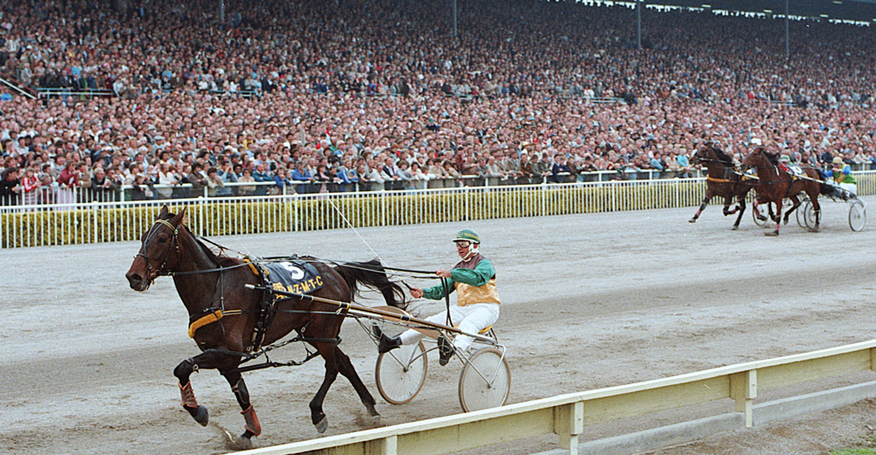 Image courtesy Ajay Berry Race Images NZ - A typical Cup day crowd at Addington watches Steel Jaw destroy the opposition in 1983.