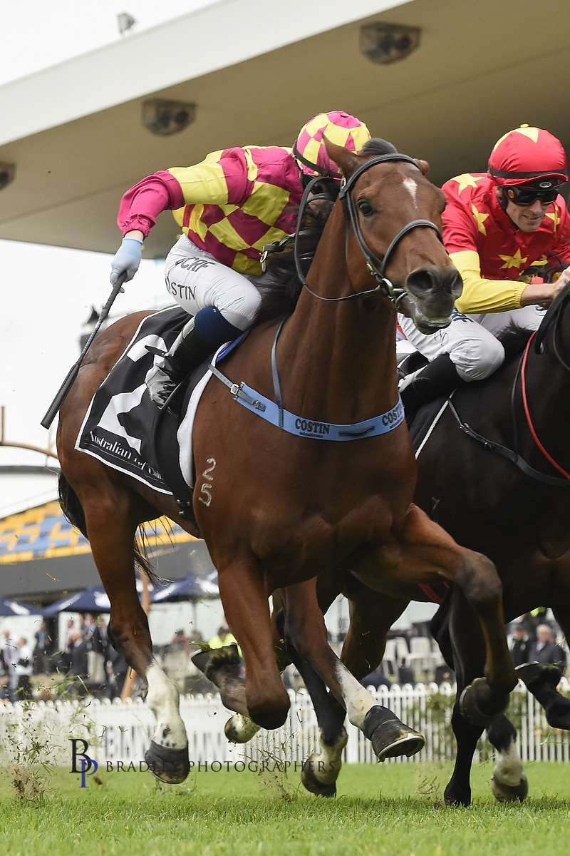 Image courtesy Bradley Photographers - Winona gets Ronstar home at Rosehill.