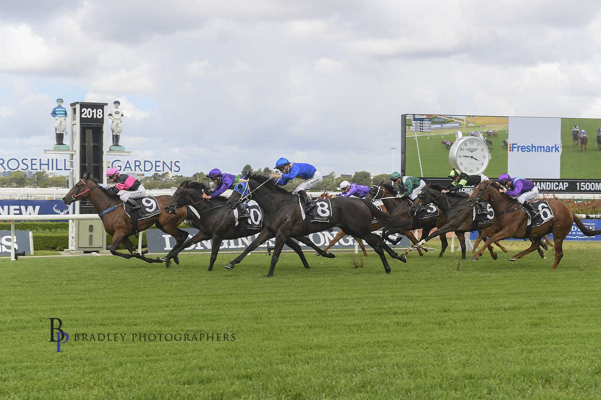 Image courtesy Bradley Photographers - Winona wins on Bye See for former boss Mick Tubman.