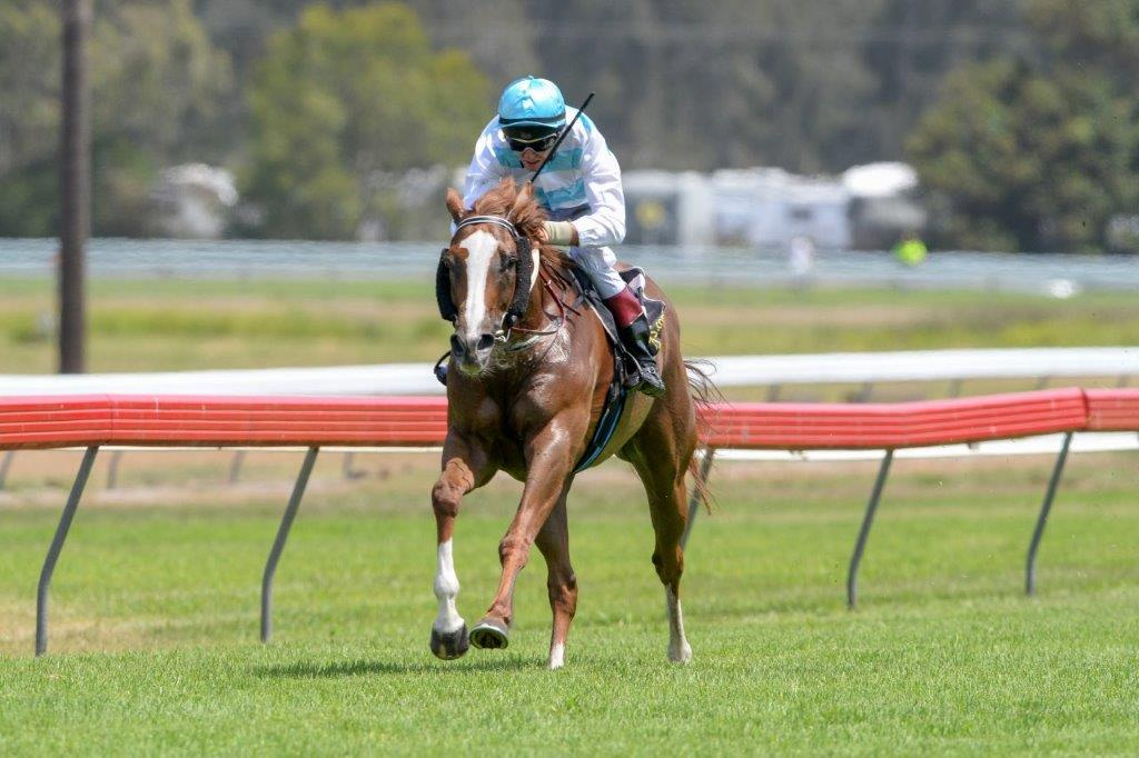 Image courtesy Trackside Photography - Peter Graham stole this one on Oakwoods Hope at Tuncurry Forster.