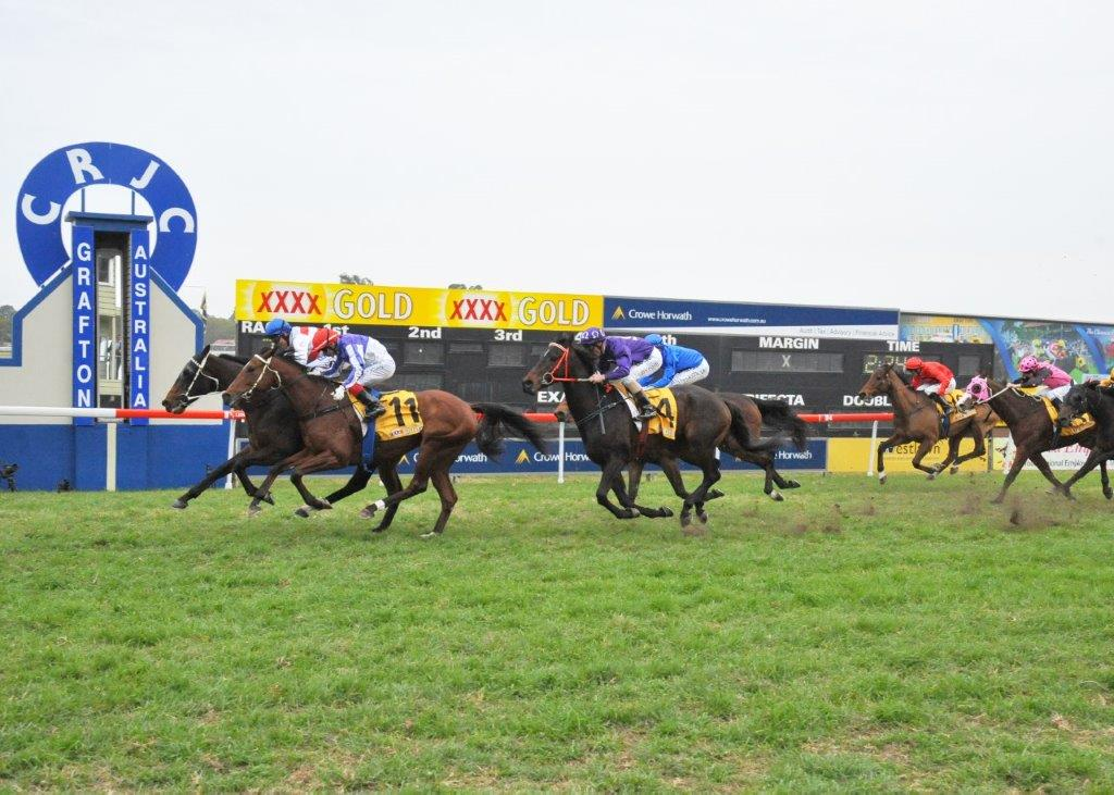 Image courtesy Trackside Photography - Peter gets Rednav home narrowly in the Grafton Cup.