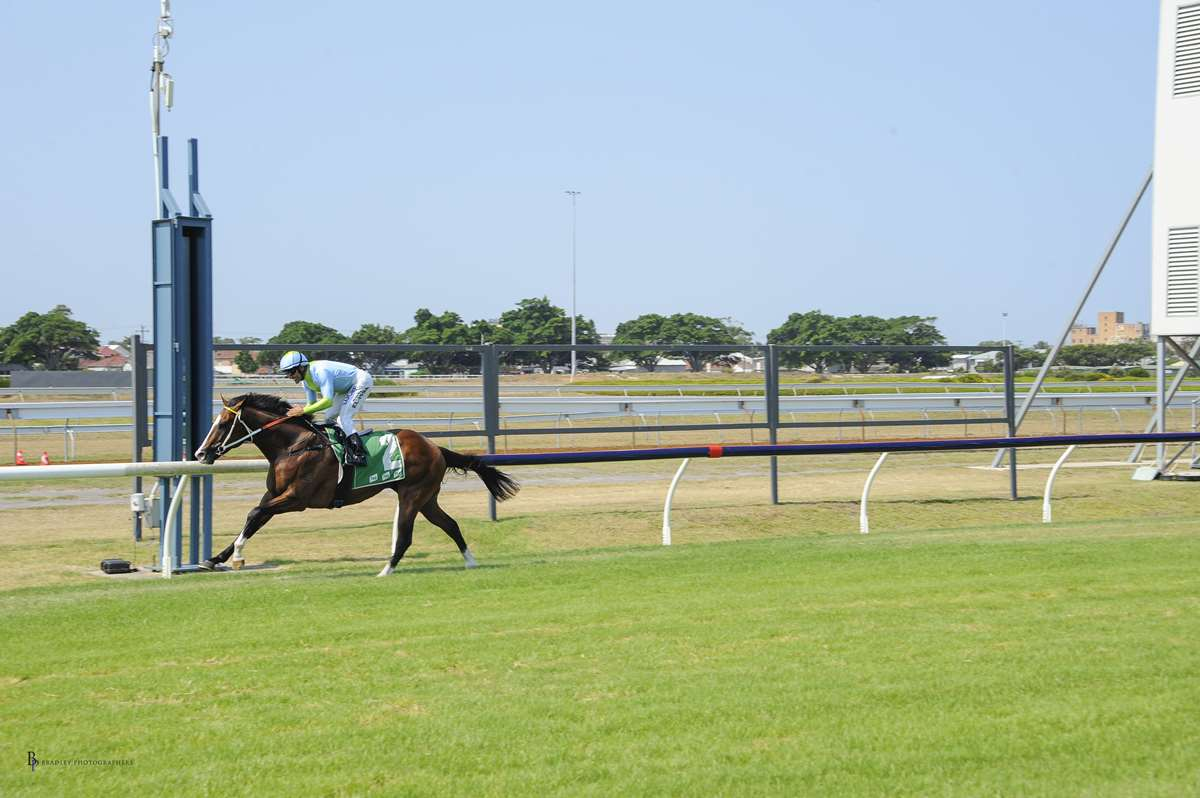 Image courtesy Bradley Photographers - Pandano gives Bobby El-Issa an armchair ride at Newcastle.