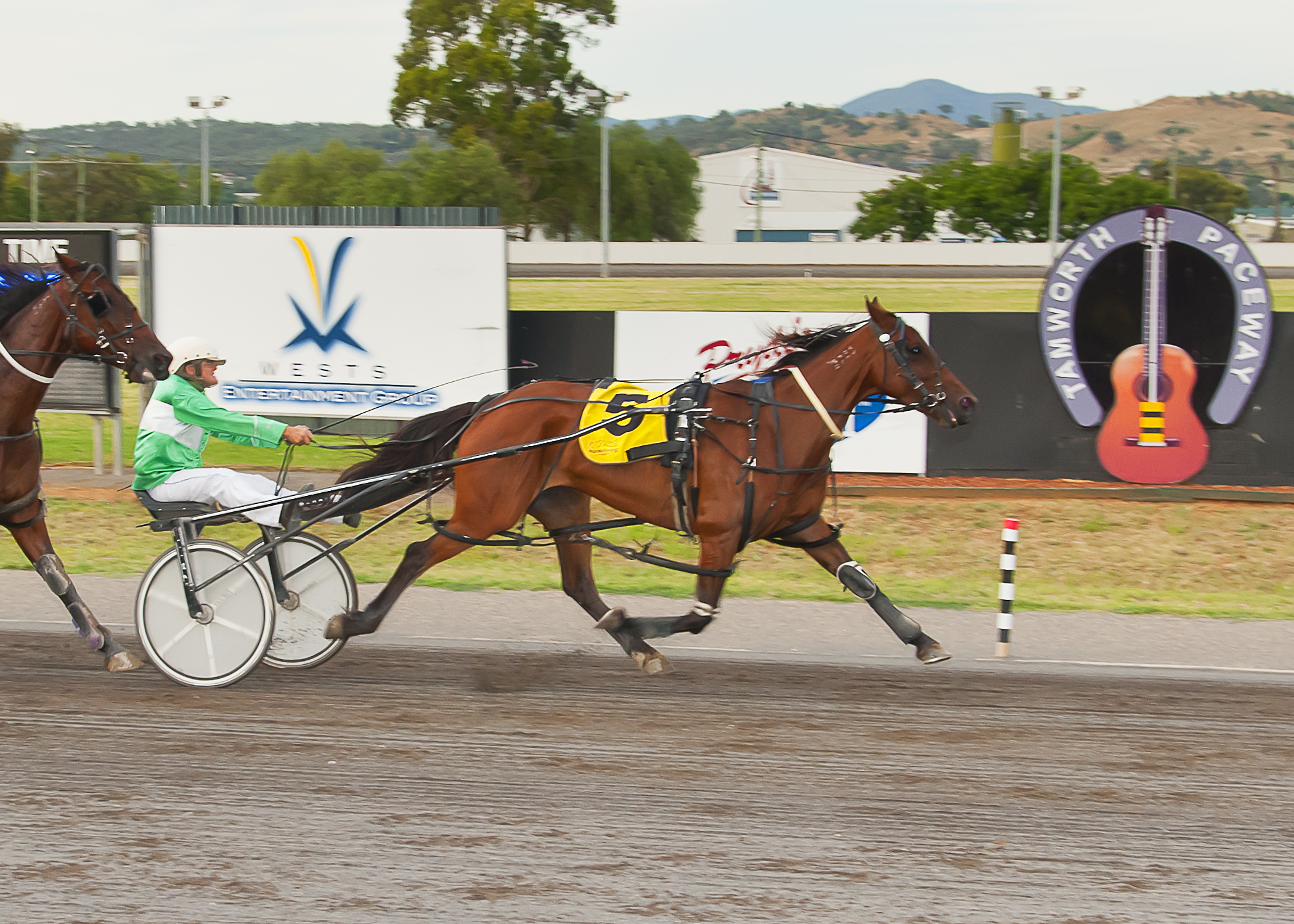 Image courtesy PeterMac Photography - Julie wins on Pepperal at Tamworth.