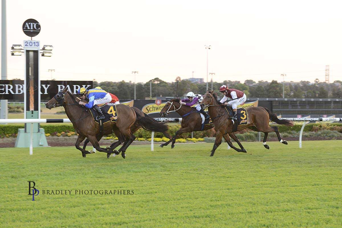 Image courtesy Bradley Photographers - Miss Tenpins helped Chad to get going in Sydney, with four straight wins including this one at Canterbury in 2013.