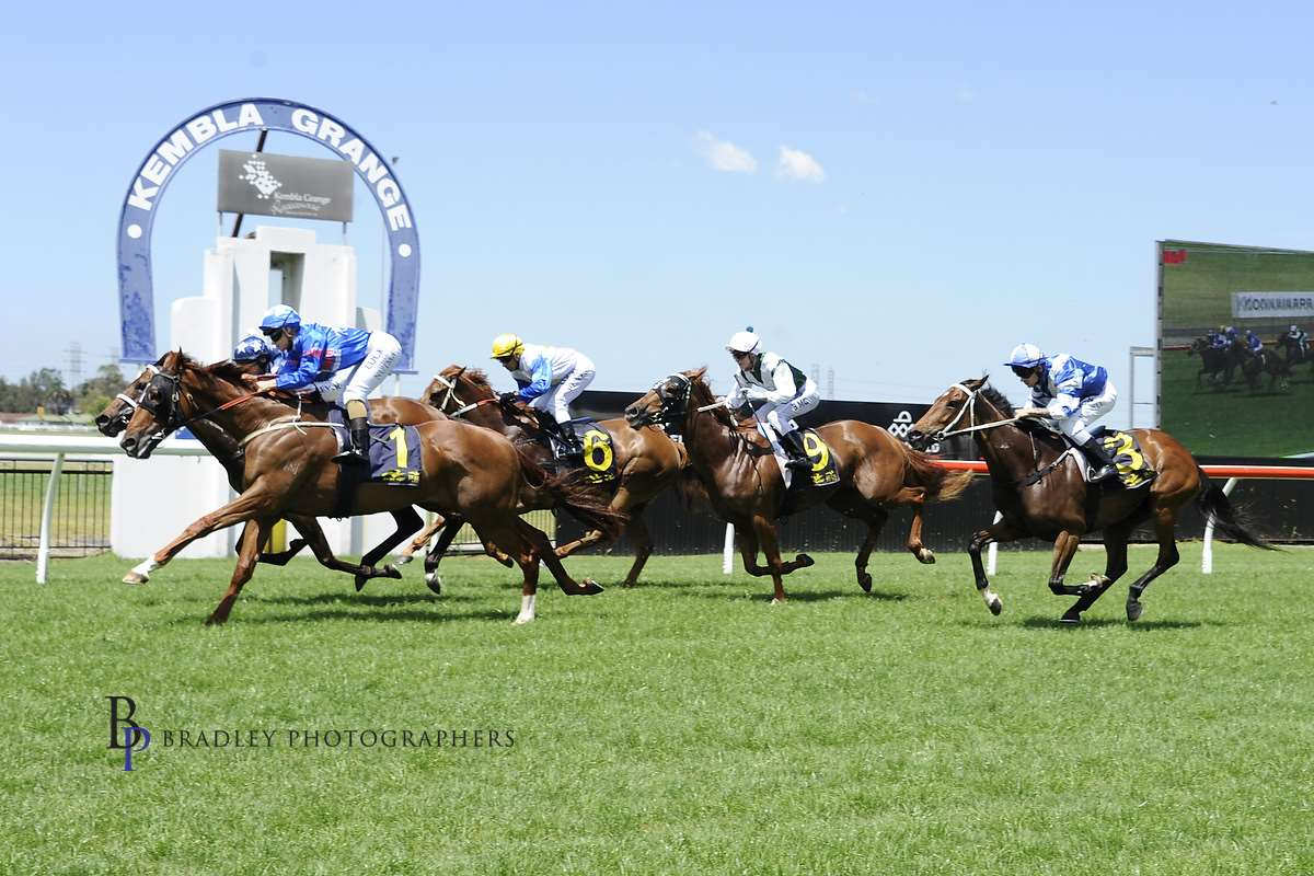 Image courtesy Bradley Photographers - Claire gets Sea Sharp home by a whisker from Chad's mount Too Quick For You at Kembla in 2016.