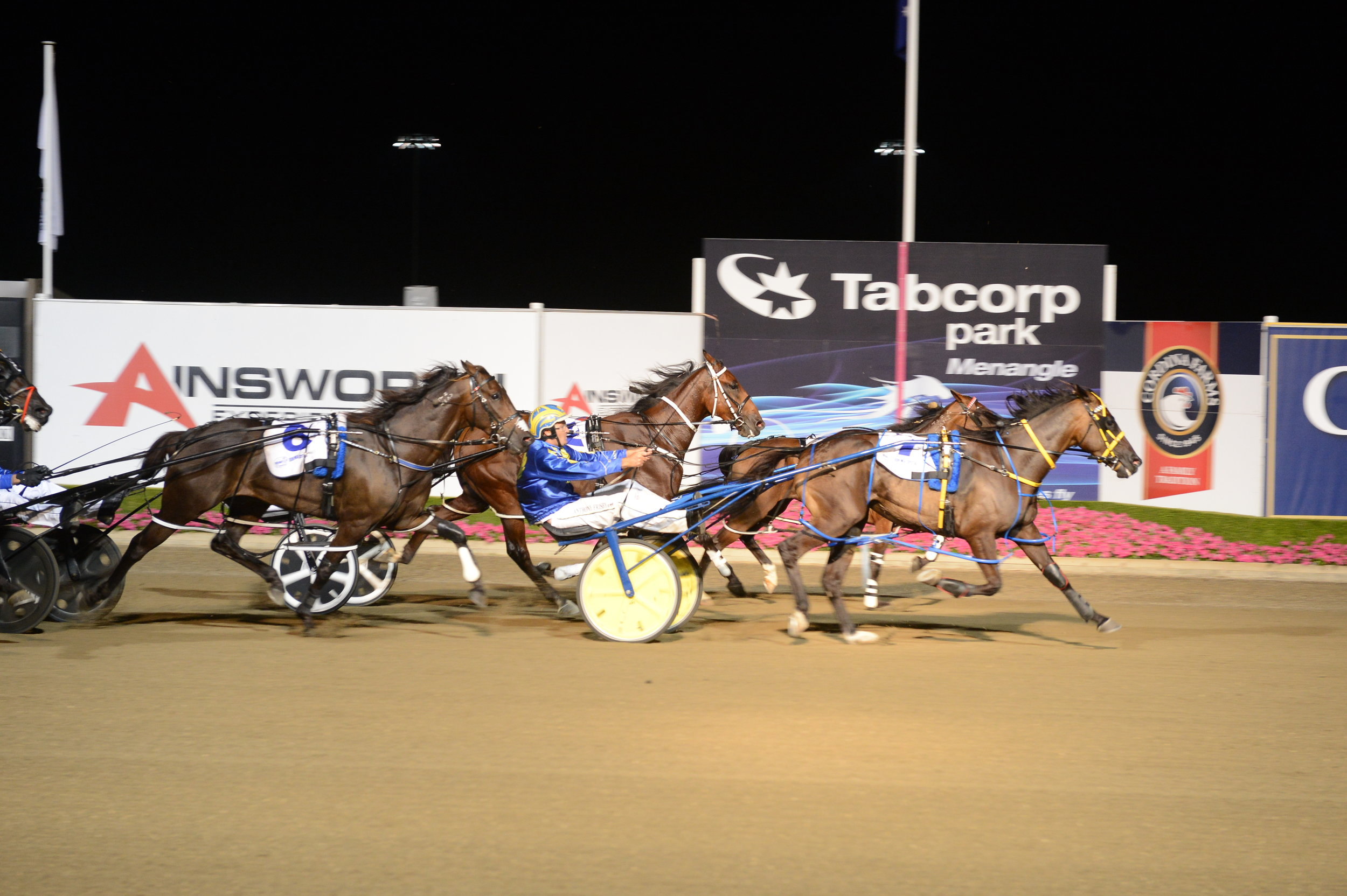 Image courtesy National Trotguide - Our Uncle Sam holds out fast finishing Ellmers Image to win the Bohemia.