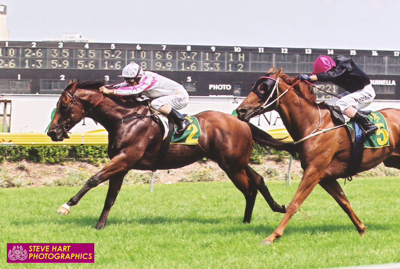 Image courtesy Steve Hart Photographics - Exceed And Excel (Corey Brown) wins the 2004 Royal Sovereign Stakes from Ambulance (Darren Beadman). Ambulance later raced in Hong Kong as Lightning Star.