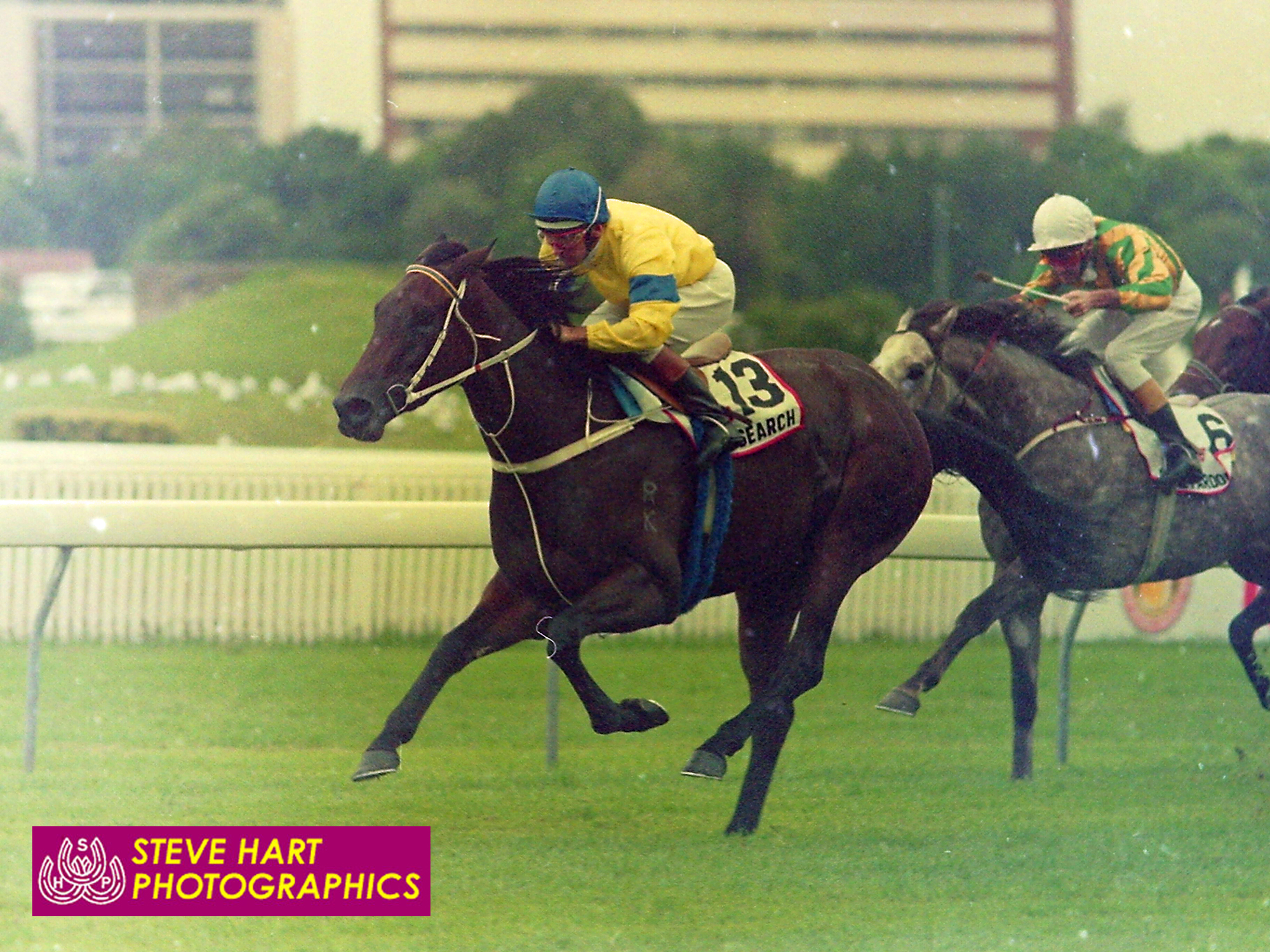 Image courtesy Steve Hart Photographics - Another angle of Research defeating Royal Pardon in the AJC Derby.
