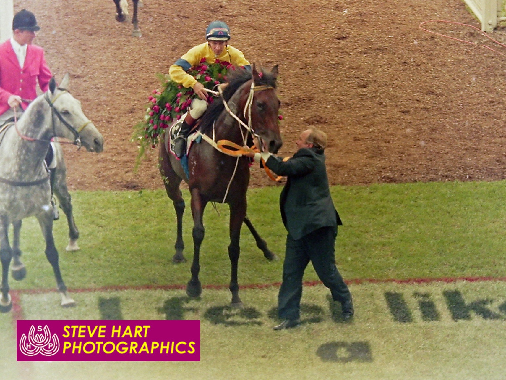 Image courtesy Steve Hart Photographics - The garland of roses caused a lot of trouble. Research looks like she's ready to plant one on the grey pony. Clarry's hanging on grimly.