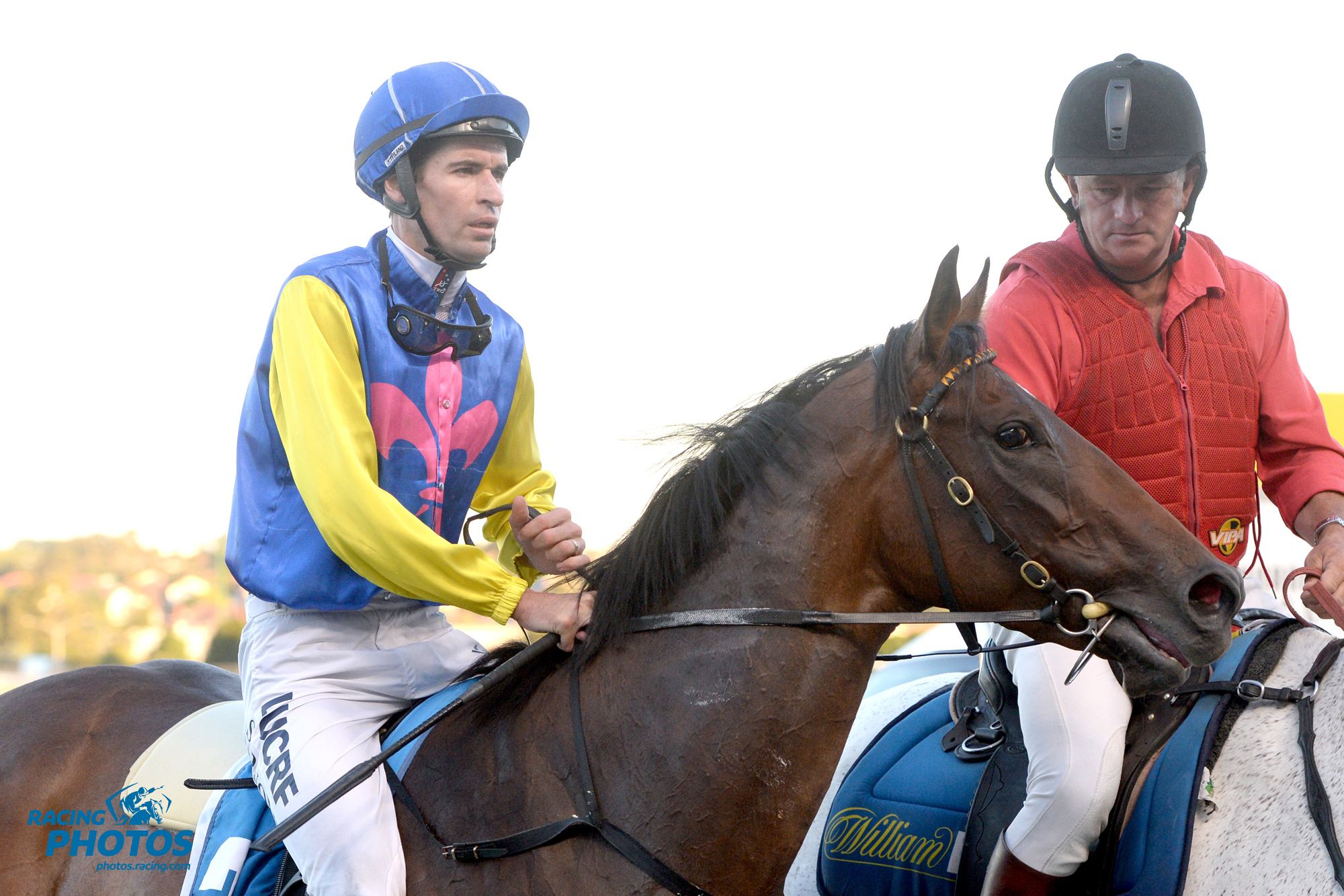 Image courtesy Racing Photos - Steve Arnold returns to scale on Federosa.