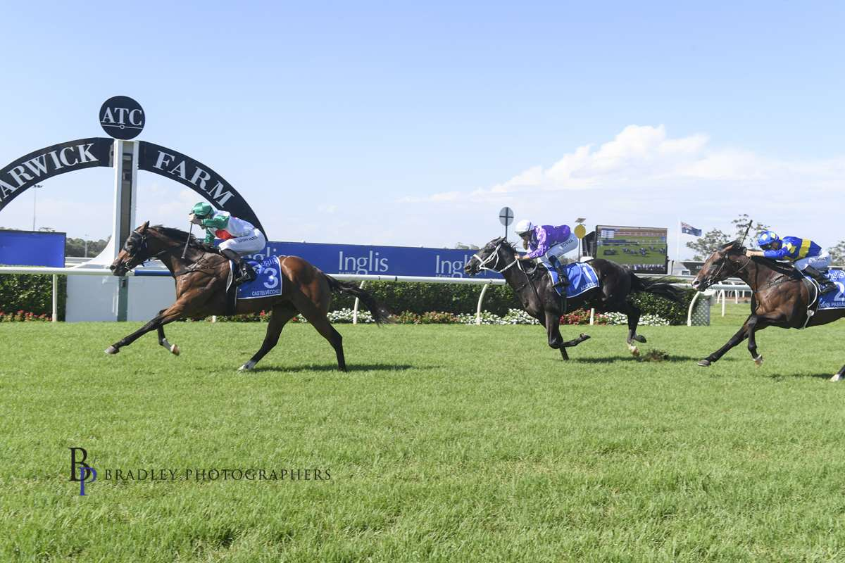 Image courtesy Bradley Photographers - Castelvecchio comes from last to win the inaugural Inglis Millenium at Warwick Farm.