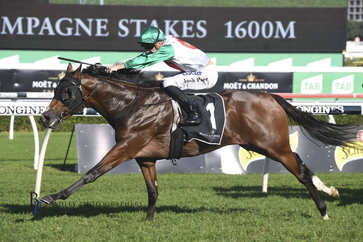 Image courtesy Bradley Photographers - Castelvecchio relished the mile of the Champagne Stakes.