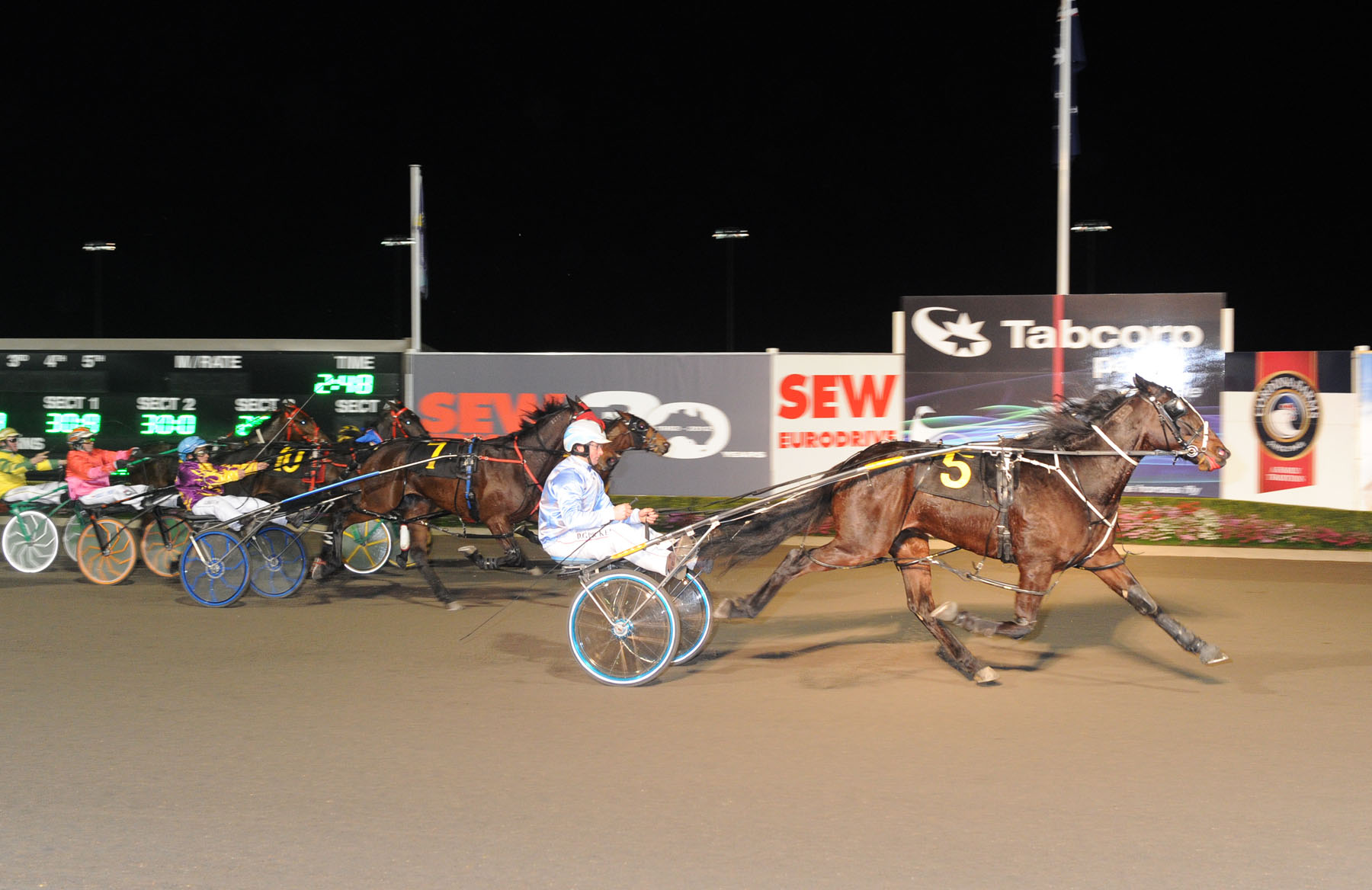 Image courtesy National Trotguide - California Sunset won 9 races for the Picker stable.