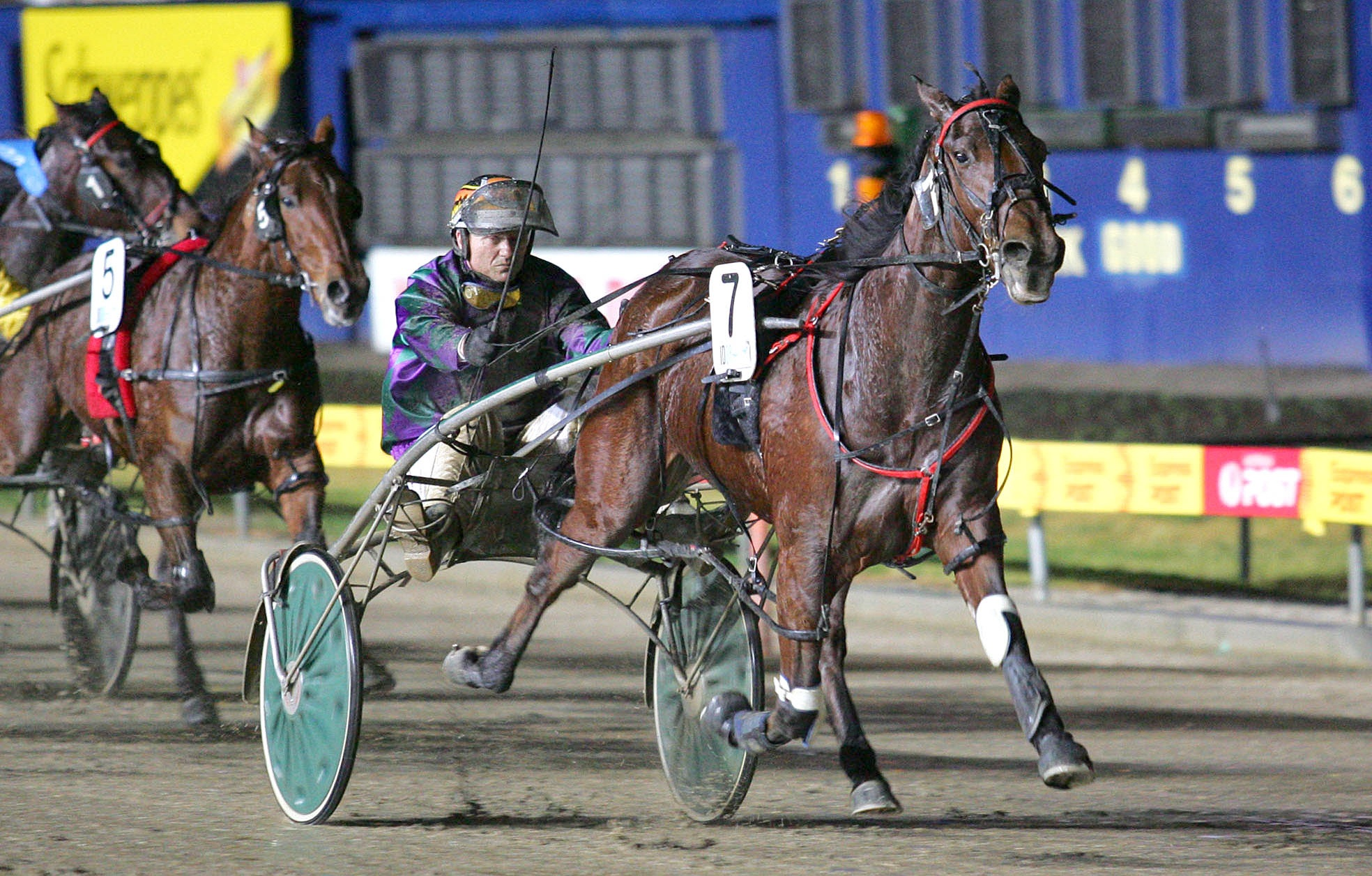 Image courtesy National Trotguide - Greg Kelly and Bruce win the Vicbred 2YO Semi Final.