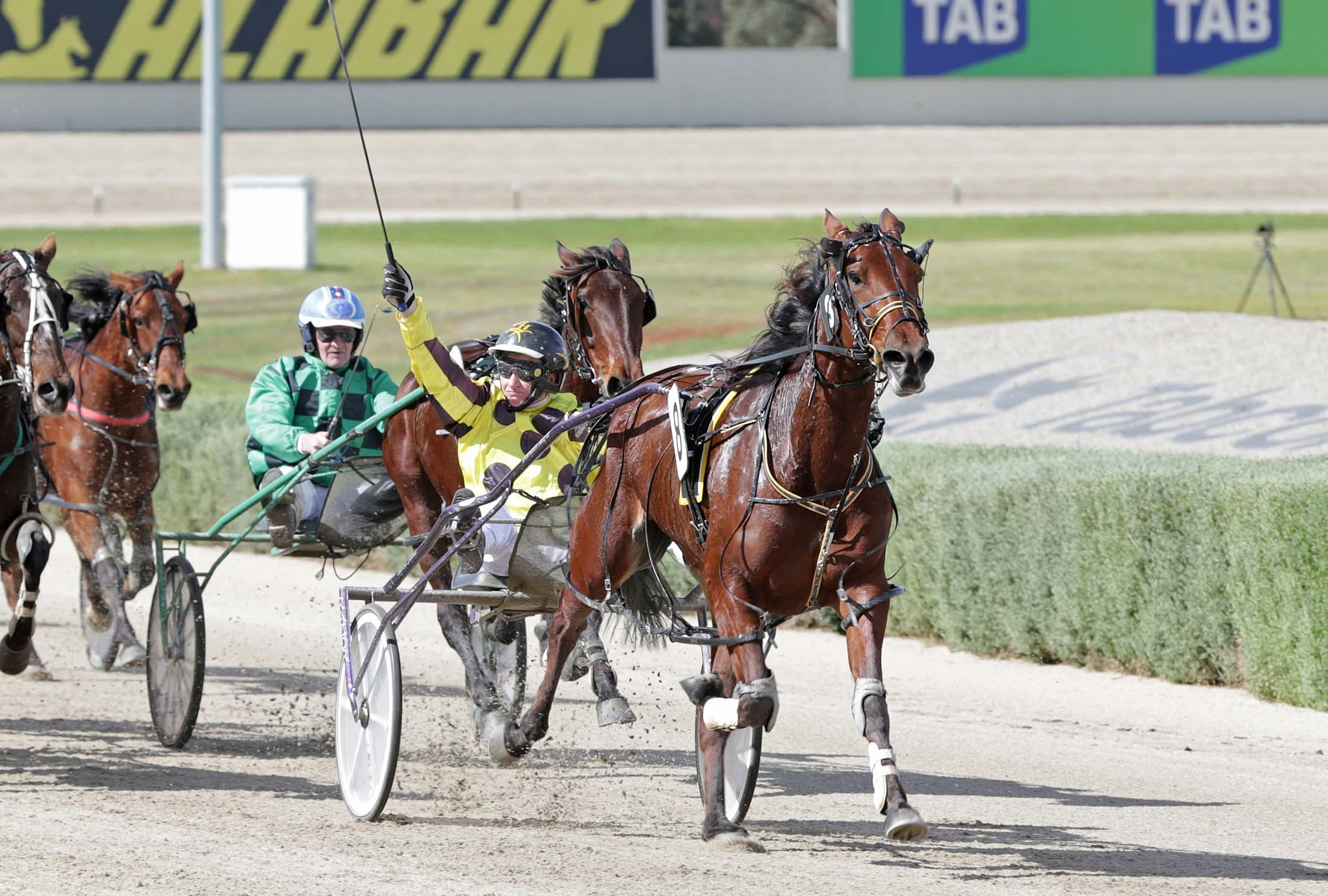 Image courtesy National Trotguide - Bruce enjoyed this win on Frith in the Breeders Crown 4YO Mares Final.