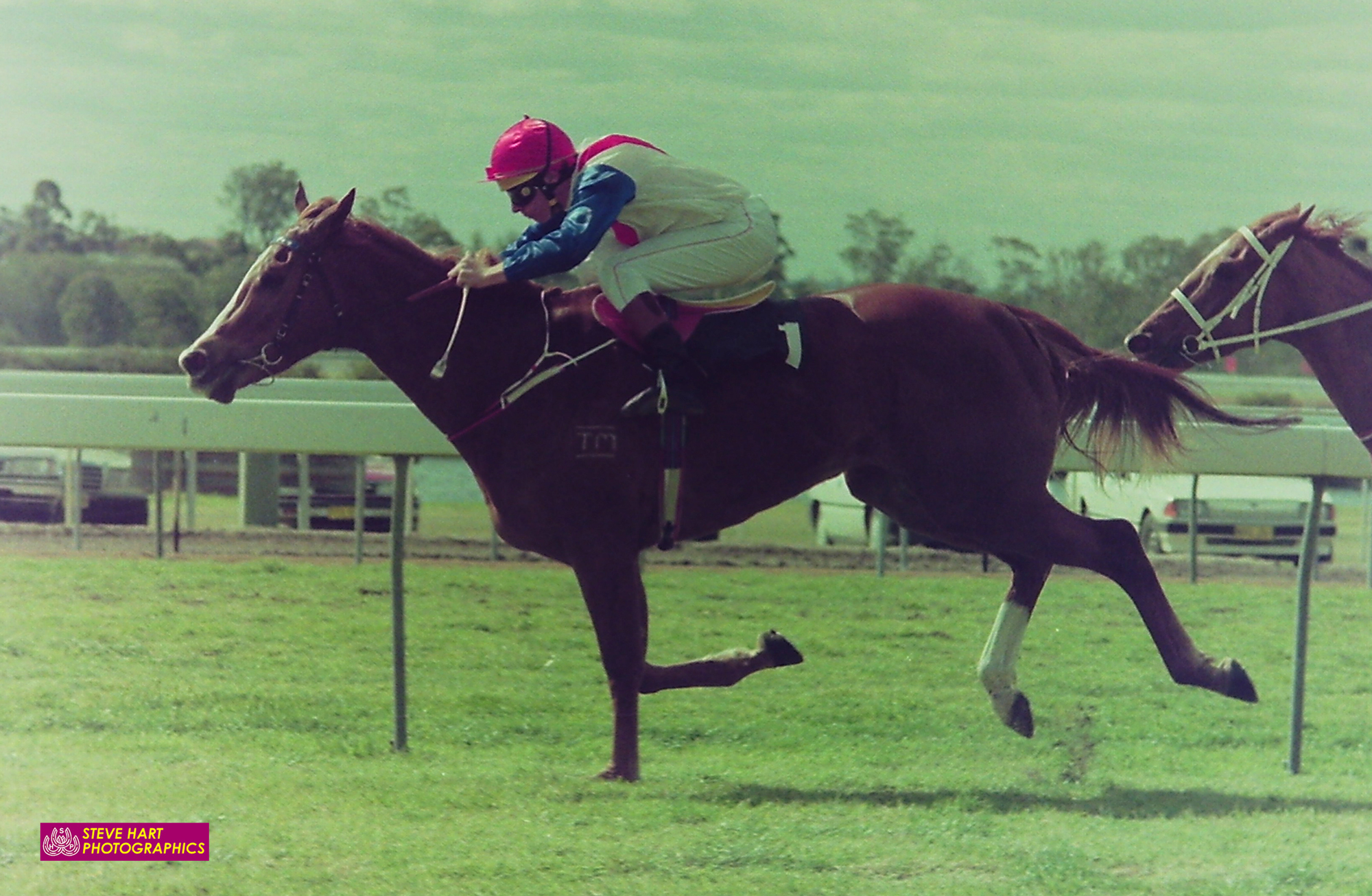Image courtesy Steve Hart Photographics - The evergreen Michael Cahill wins on Ice Cream Sundae , Warwick Farm 04/09/1990.