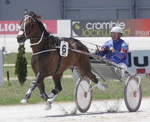 Image courtesy National Trotguide - De Fillipe with the best trotter he's ever trained, the brilliant Stent.