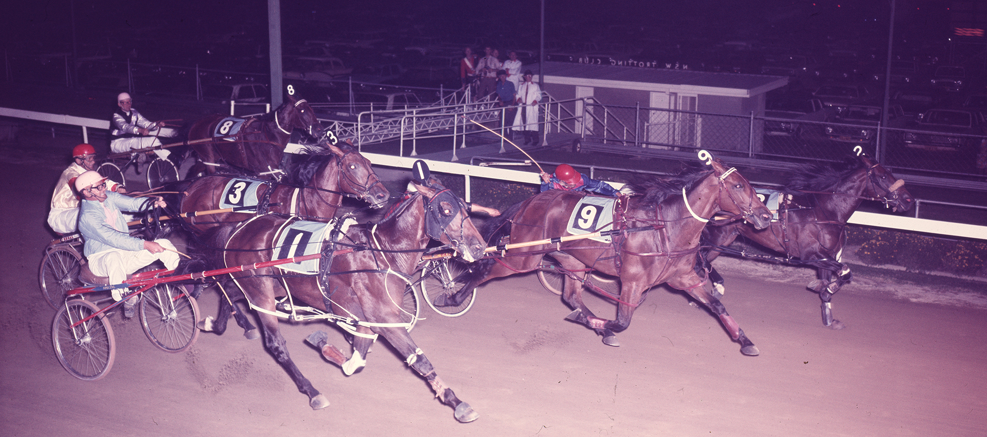Image courtesy National Trotguide - A thrilling finish in the 1973 Inter Dominion Grand Final.