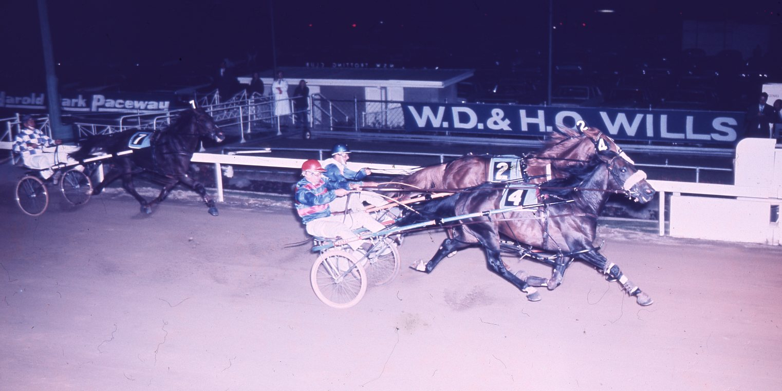 Image courtesy National Trotguide - Hondo knew where the winning post was - Here he sticks his head out to nail Paleface in the 1974 Miracle Mile.