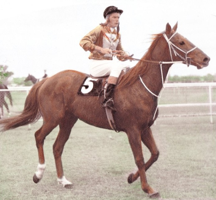 Norm rode 30 winners as an amateur jockey - one of those winners was Castle Game.